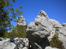 a-visit-to-sauve-16th-may-2012-006.jpg